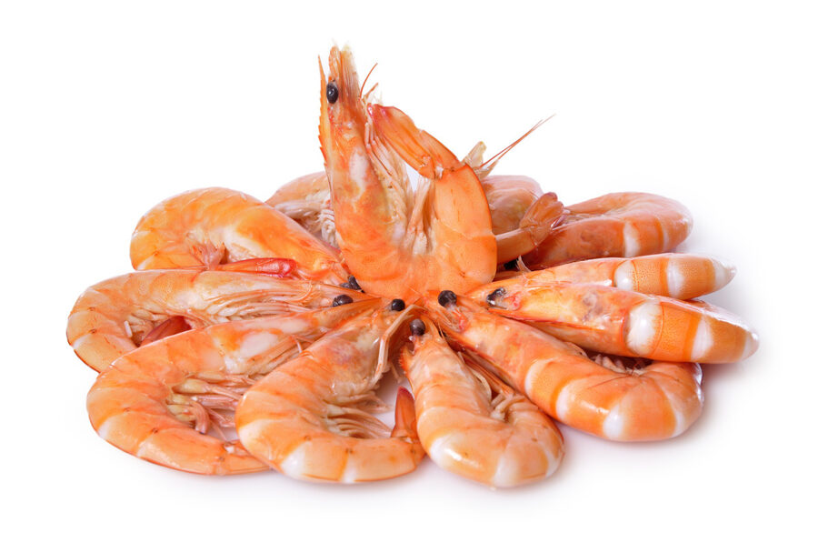 Langostino Cocido Mediano 40/60.  1.9 Kgs